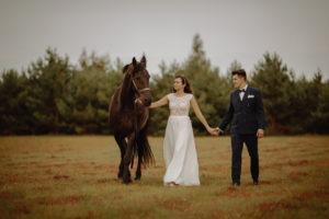 sesja poślubna  stajnia Morgan Balczewo fotografia slubna Swiatlo i Emocje Agata i Bartek